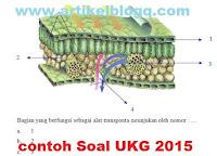 gambar contoh soal UKG 2015