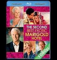 EL EXÓTICO HOTEL MARIGOLD 2 (2015) FULL 1080P HD MKV ESPAÑOL LATINO