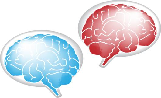 Historia de dos cerebros (El de él... y el de ella)