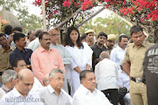 Akkineni Nageswara Rao Cremation Photos Gallery-thumbnail-16