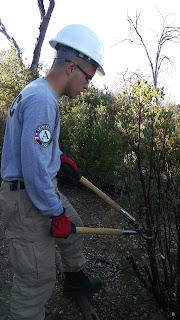 MCPS Alum & Local Hero Serves in National Service Program 2