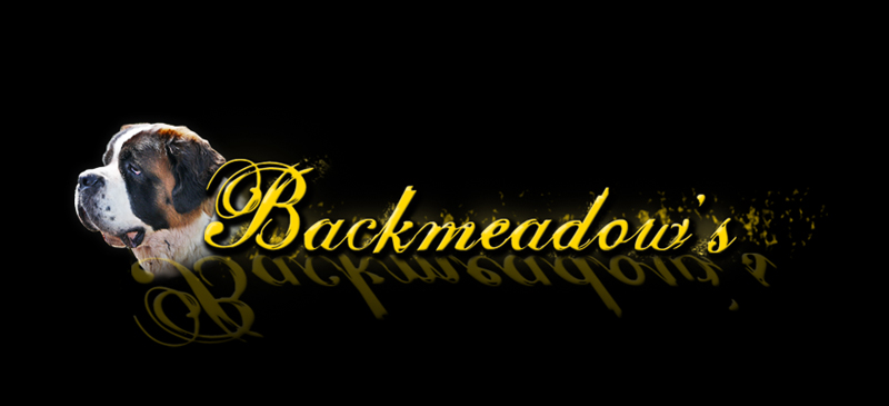 Backmeadow's