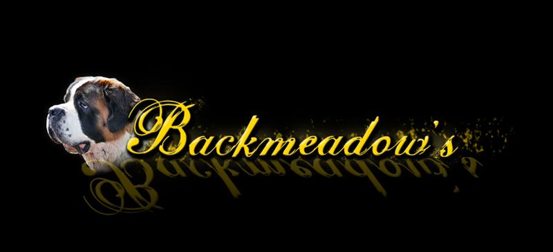 Backmeadow's