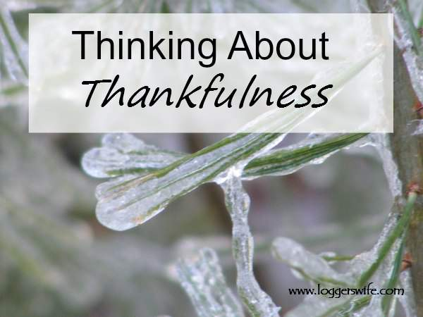 Thinking About Thankfulness...why we should be thankful all year long, not just November
