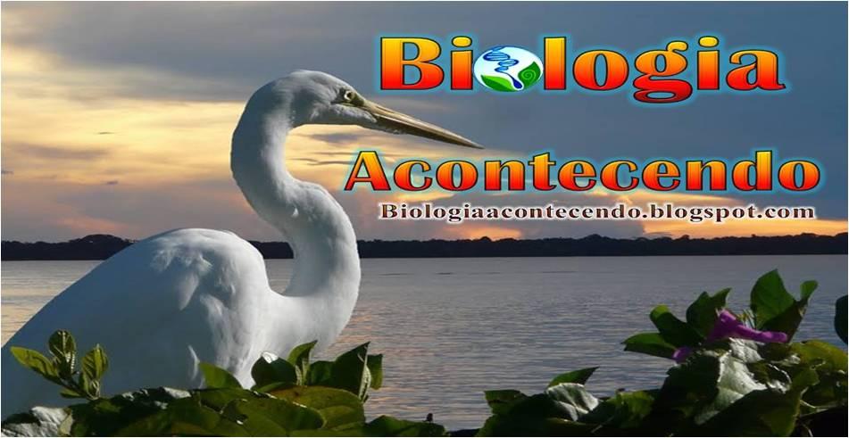 BIOLOGIA ACONTECENDO