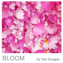 Tara Douglas Art