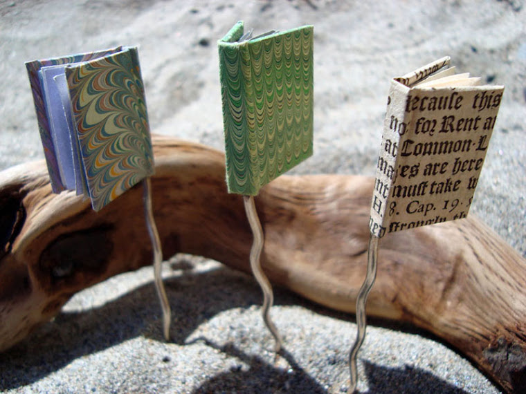 BOOK HAIR STICKS