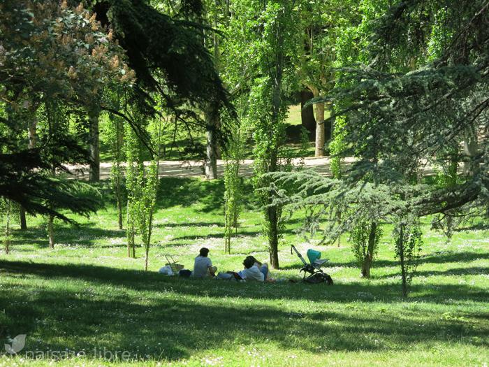 Tienda muebles alcorcon nueva tienda de ikea en el parque - Parque oeste alcorcon ...