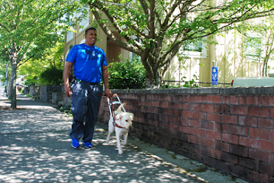 Jeremy and his guide dog Spice walk down a sunny street