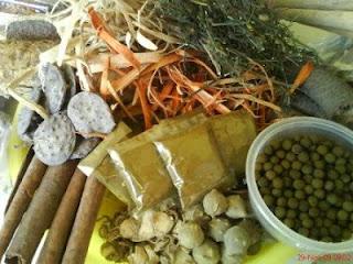 Obat herbal untuk mengatasi penyakit ayam