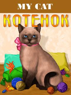 My Cat Java