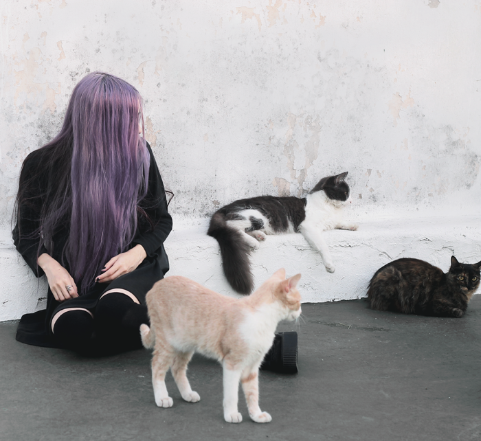 violet-lilac-hair-black-dress-outfit-grunge-witch-gothic-pastel-cats