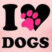 Köpekleri Çok Seviyorum!