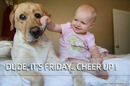 Funny friday dude it is friday cheer up