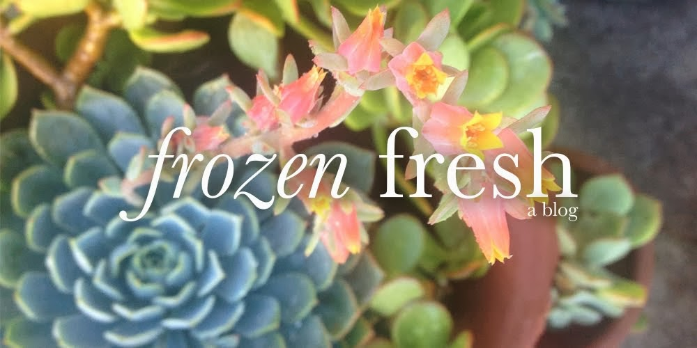 Frozen Fresh