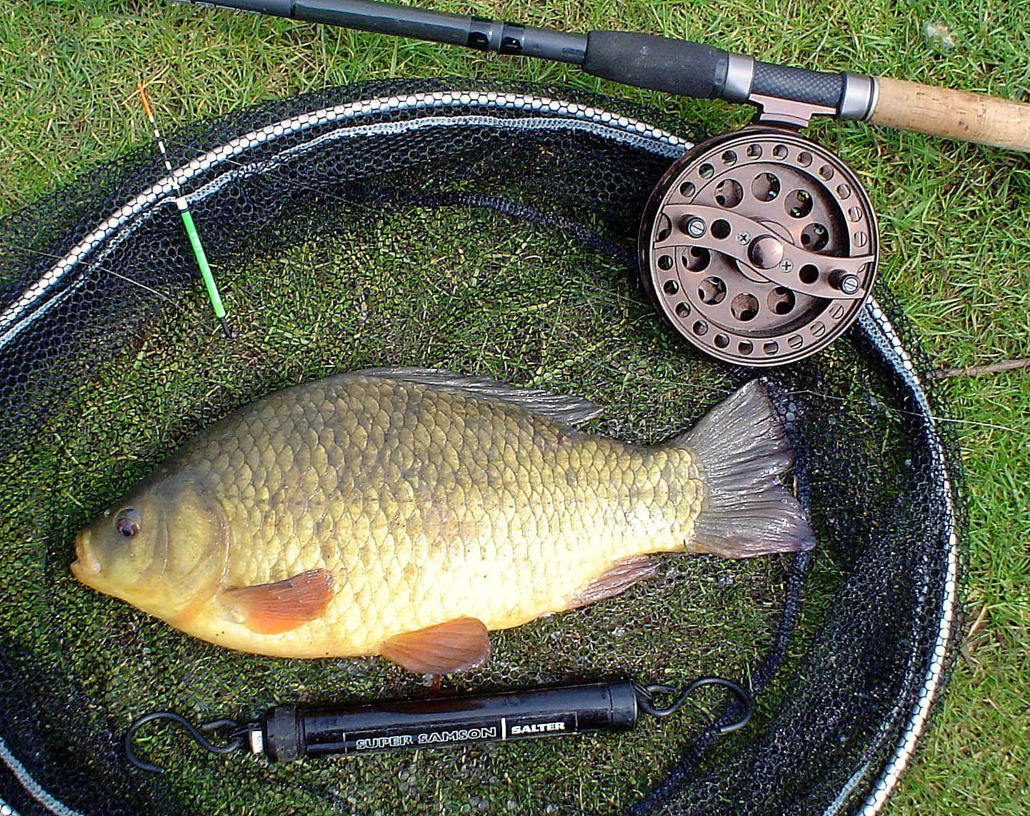 Float tackle for catching crucian (photo) 95