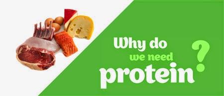 Mengenal Fungsi dan Kekurangan Protein