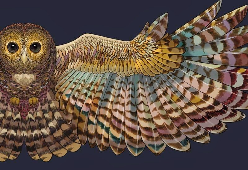 Scarves With Beautiful Birds Wings by Roza Khamitova
