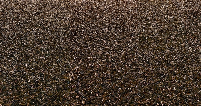 Spent bullet casings, 2005