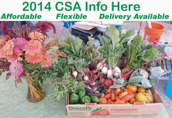 2014 CSA Info Here