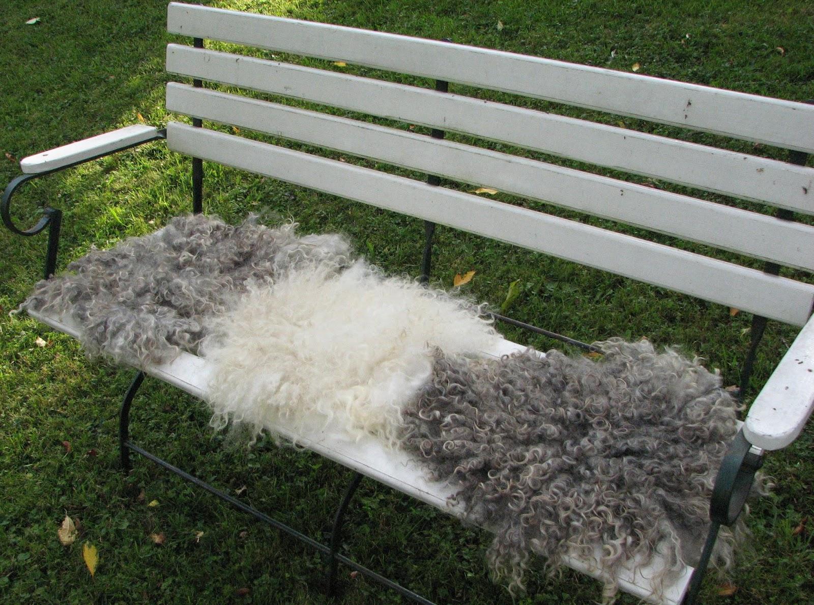 Farbenfaden Sitzfellchen filzen