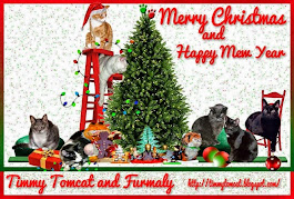 Merry Christmas Timmy Tomcat and family!
