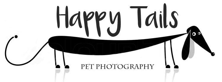 HappyTails Pet Photography
