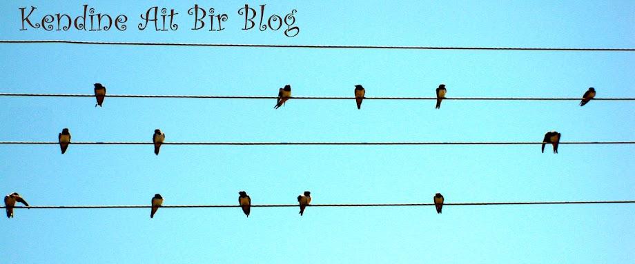 Kendine Ait Bir Blog
