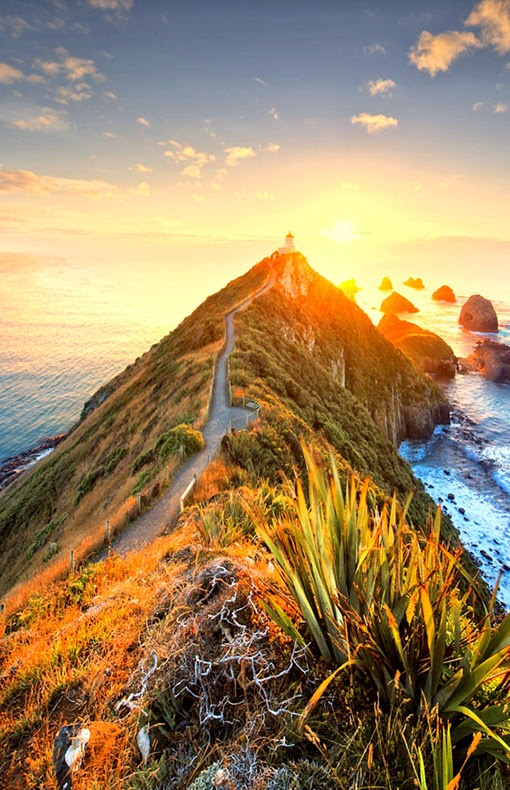 Nugget Point Lighthouse,New Zealand