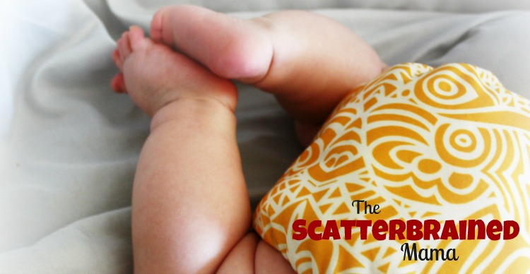 The Scatterbrained Mama