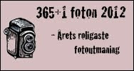 365+1 2012