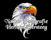 Mijn website www.hermanversteeg.com