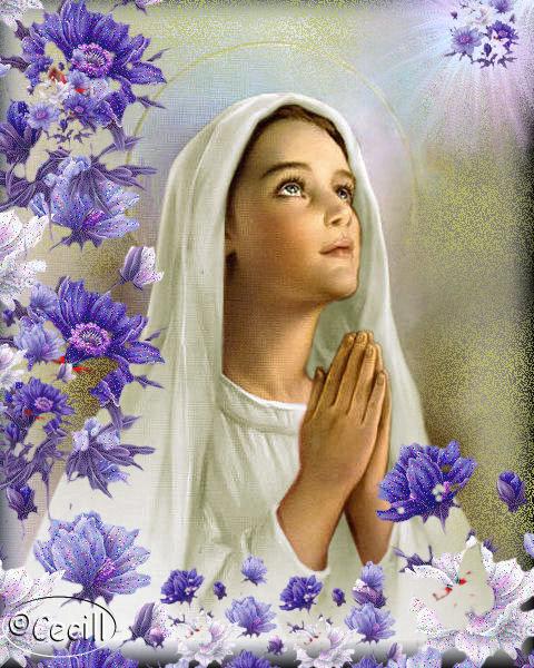 Virgen mar a ruega por nosotros im genes virgen - La rosa racconta la vita dei divi ...