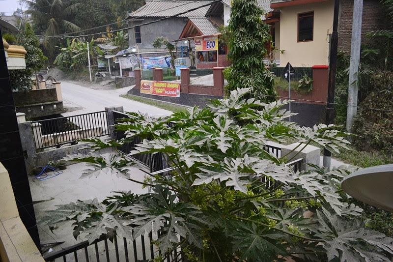 Gunung Kelud - Kado Hujan Abu