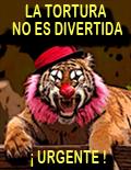 ¡NO AL CIRCO CON ANIMALES!