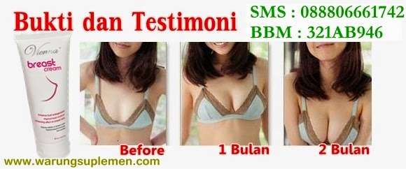 Bukti dan Testimoni  Vienna Breast Cream