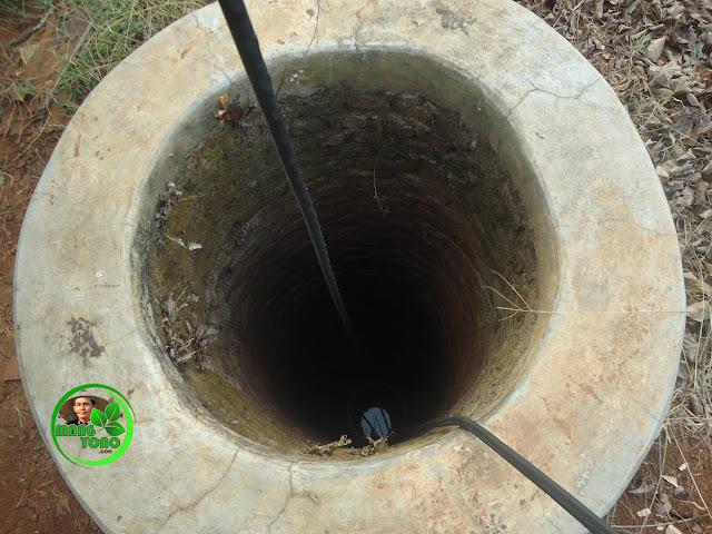 FOTO : Sumur timba tengah kebun admin