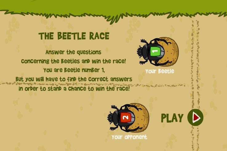 Kids Game : Beetle Race