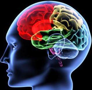 ابتعد عن 10 أفعال فهى تسبب تدمير الدماغ / المخ