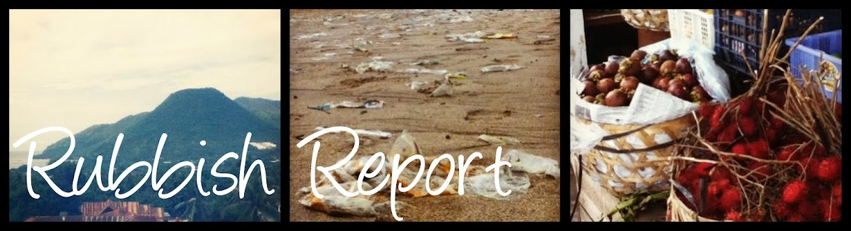 RUBBISH REPORT