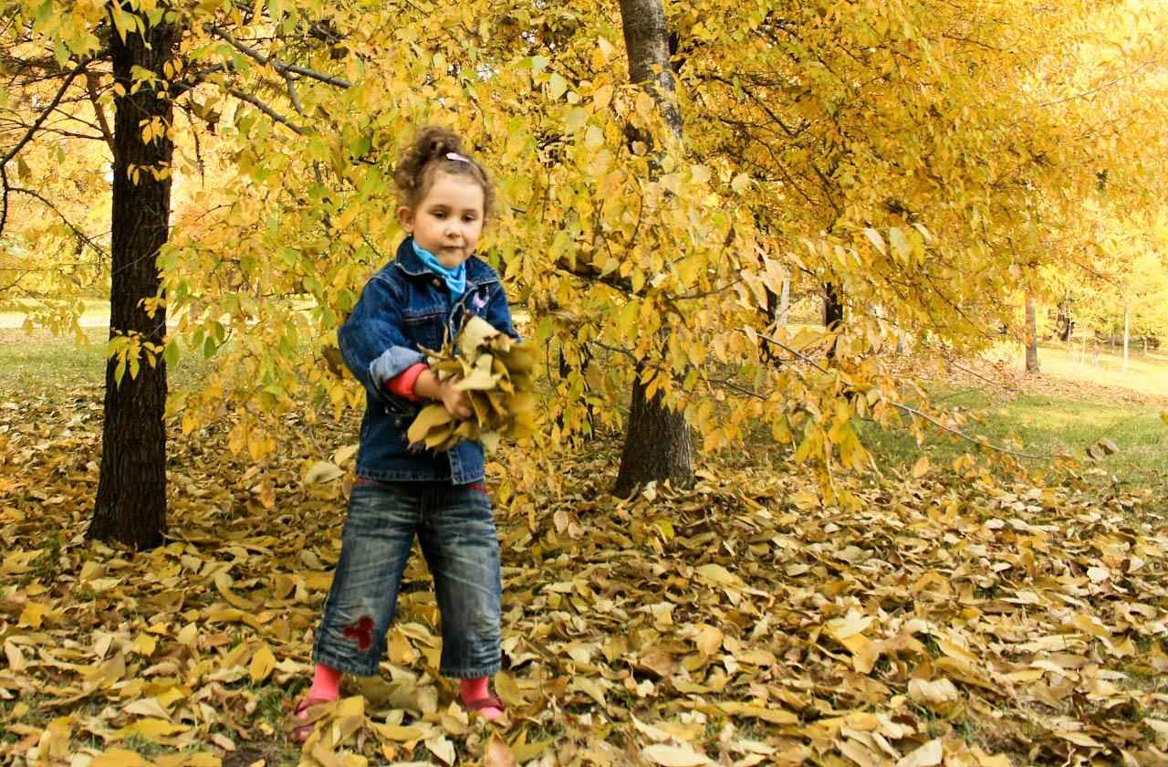 лиственница осенью