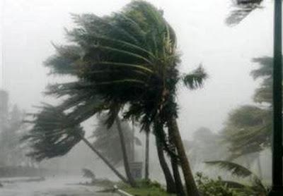 hurricane,typon,cyclone,ribut taufan,taufan ganas
