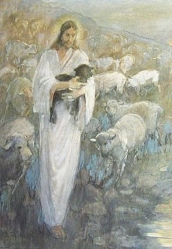 Resuce of the Lost Lamb