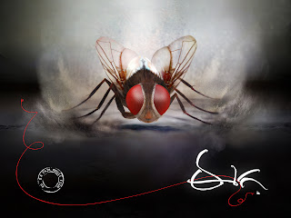 review of eega