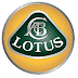 Lotus judge: why sue, if you can race each other for the name?