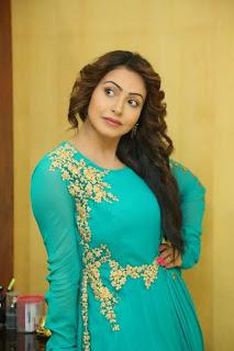 Telugu Actress Nandini Rai Pictures in Long Dress at Mosagallaku Mosagadu Interview  10.JPG