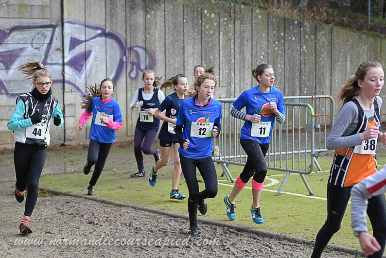 cross des benjamines