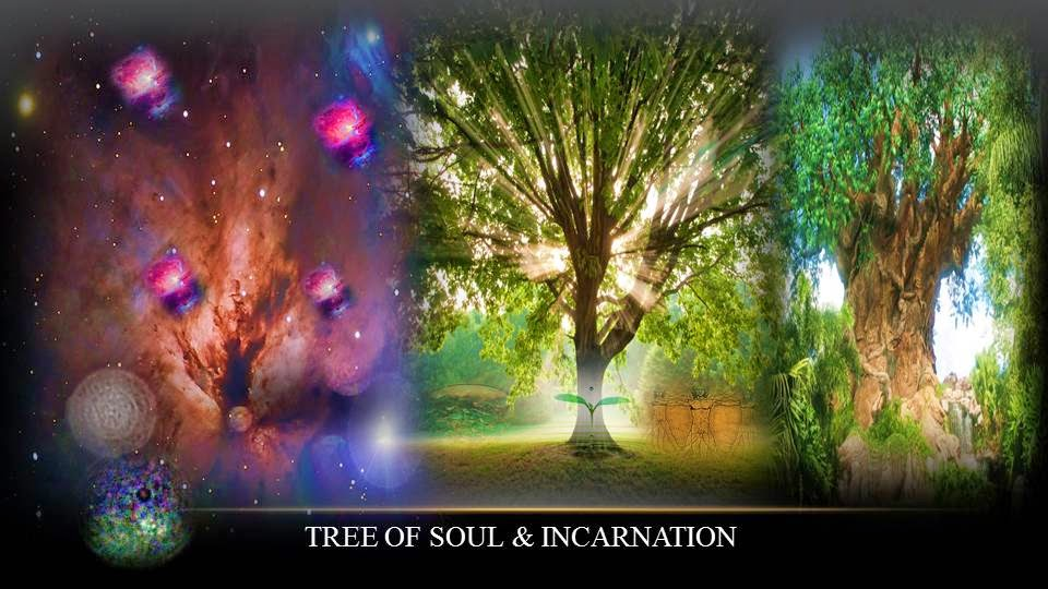 soul and reincarnation The idea of reincarnation in hinduism is perhaps as old as hinduism the soul incarnates again in a human body and goes through the process of gradual spiritual.