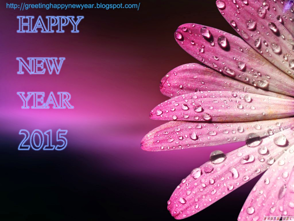 Top Class New Year 2015 Wallpapers – Download Latest Pictures For Free