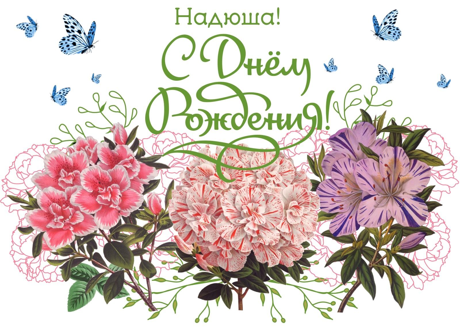 Плейкаст с днём рождения надежда красивые поздравления 28
